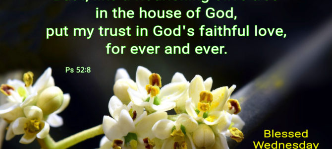 I put my trust in God's faithful love (BL)