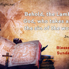 Behold, the Lamb of God, who takes away the sin of the world!