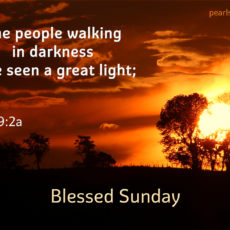 The people walking in darkness have seen a great light;