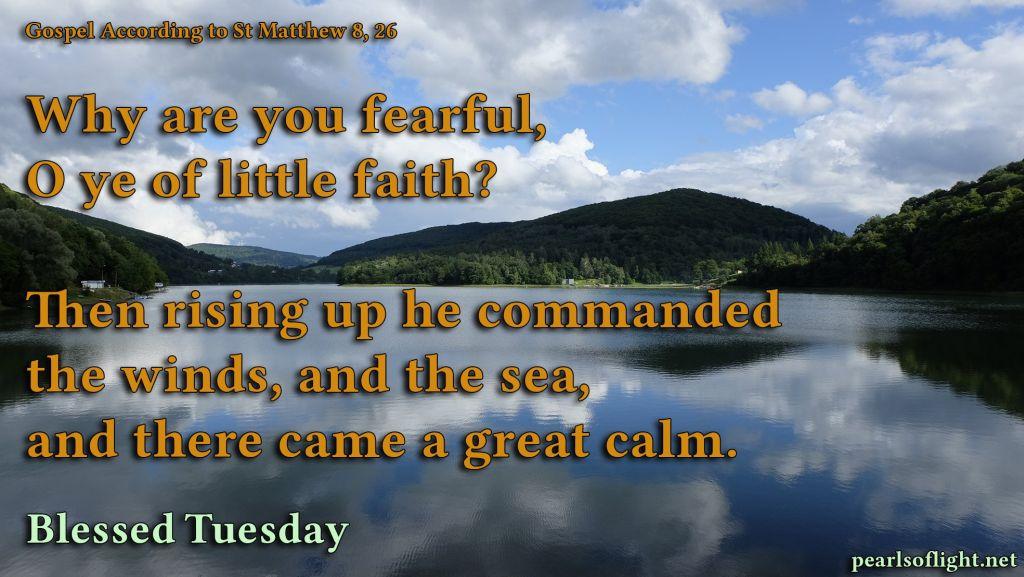 Why are you afraid, you of little faith?