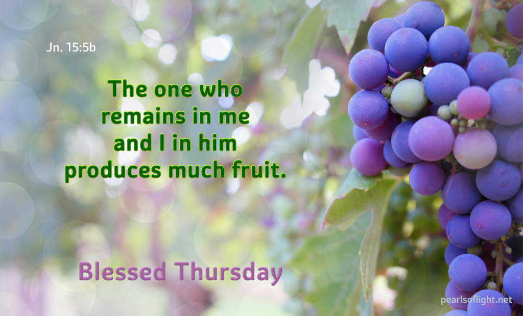 The one who remains in me and I in him produces much fruit