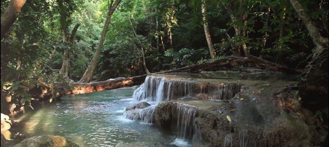 Łagodny wodospad w dżungli