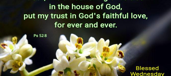 I put my trust in God's faithful love (BL)