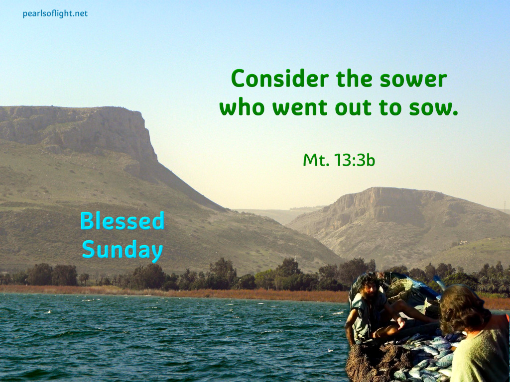 Consider the sower who went out to sow.
