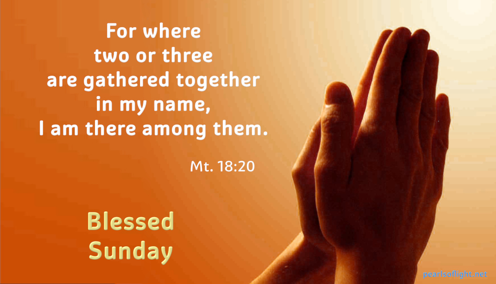 For wheretwo or three are gathered together in my name, I am there among them.