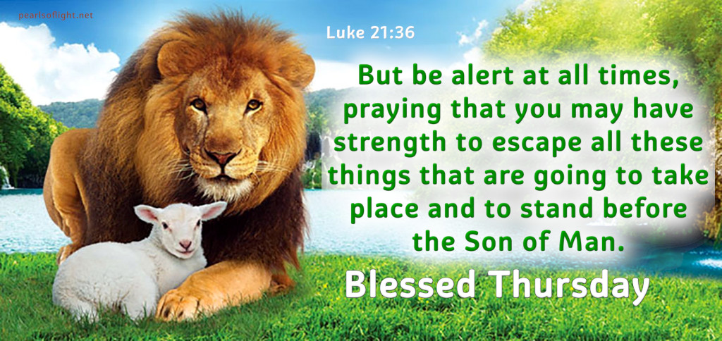 But be alert at all times, praying …